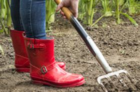 Gartenpflege Stricker Immobilienservice